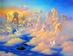 All Animals (And Even Some Humans!) Go to Heaven